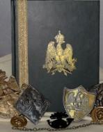 Пехота армии Наполеона. От Аустерлица до Ватерлоо. Том 1